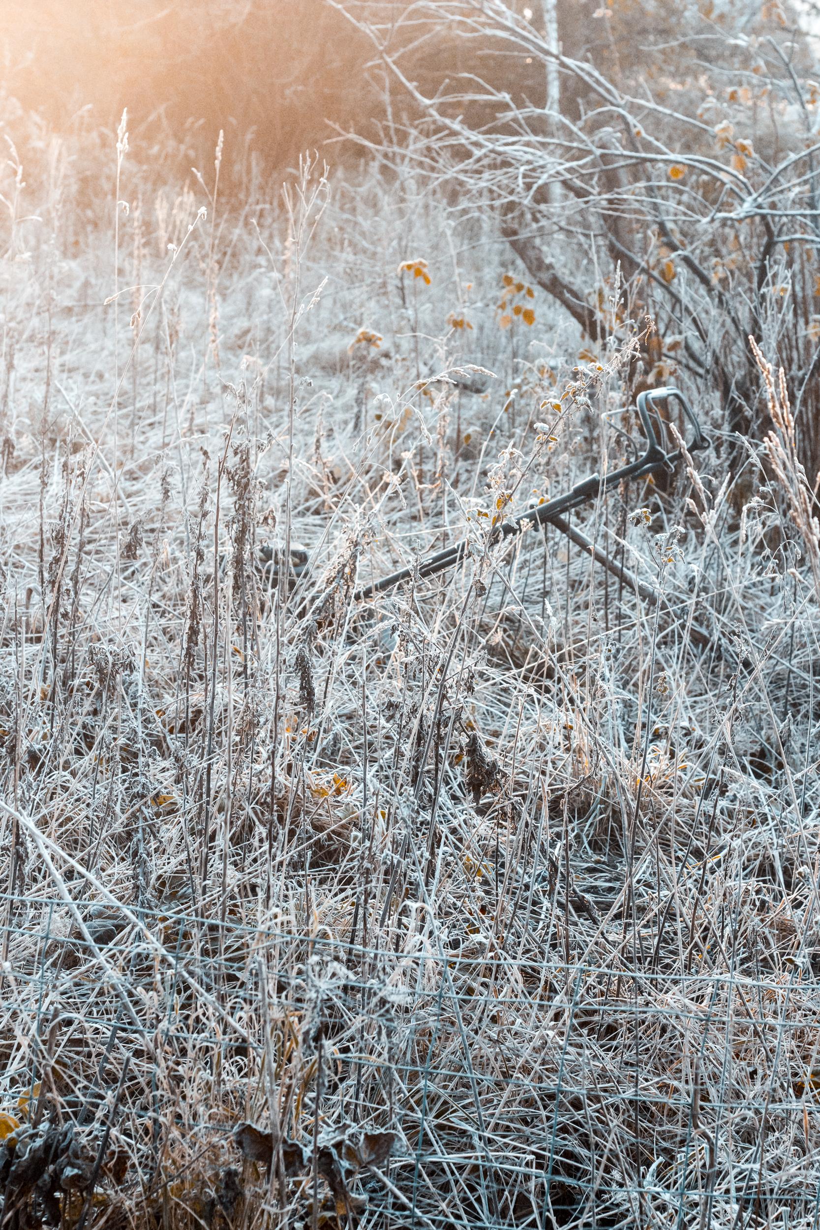 Nina Marquardsen Morgenfrost Fotografi