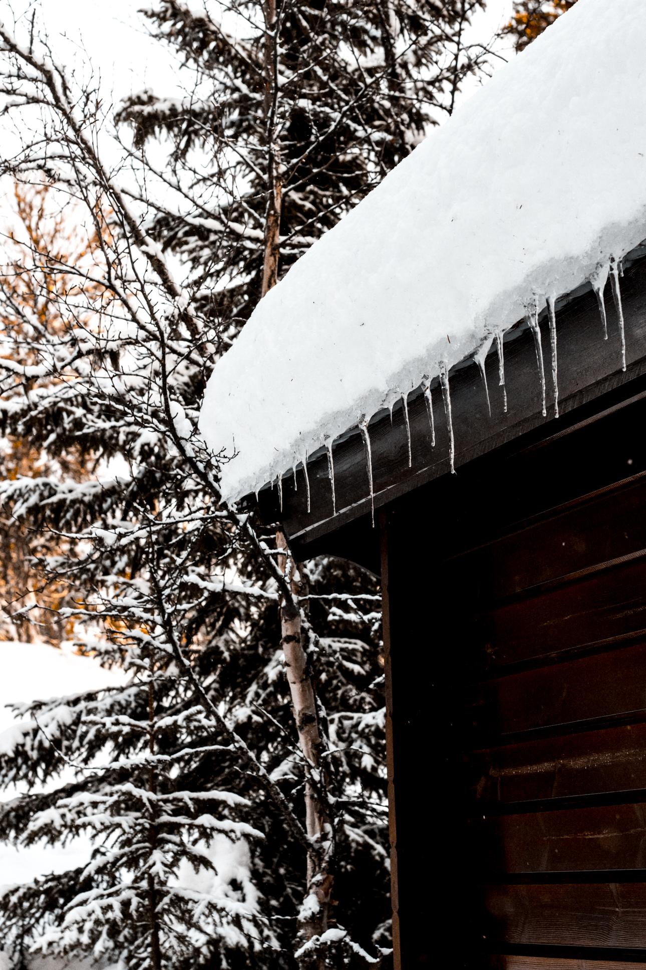 Nina Marquardsen - Skitur og nysne