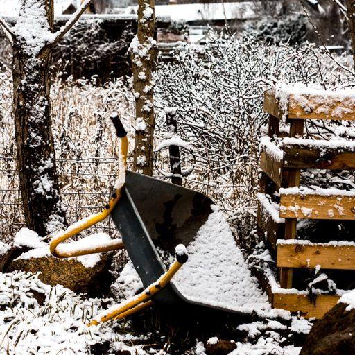 Vinter billeder